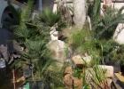 Cascade en pierres reconstituées Hérault